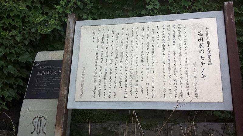 天然記念物看板