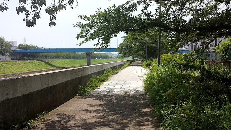 川沿いの小道