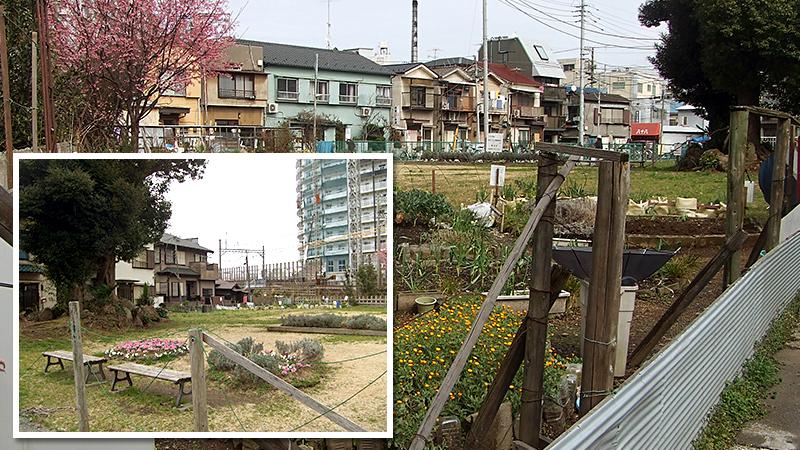 京島の再開発
