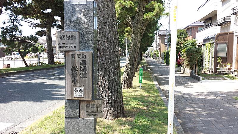 舞阪宿松並木入口