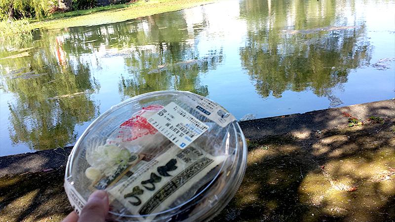 青沼公園でとろろそばを食べる