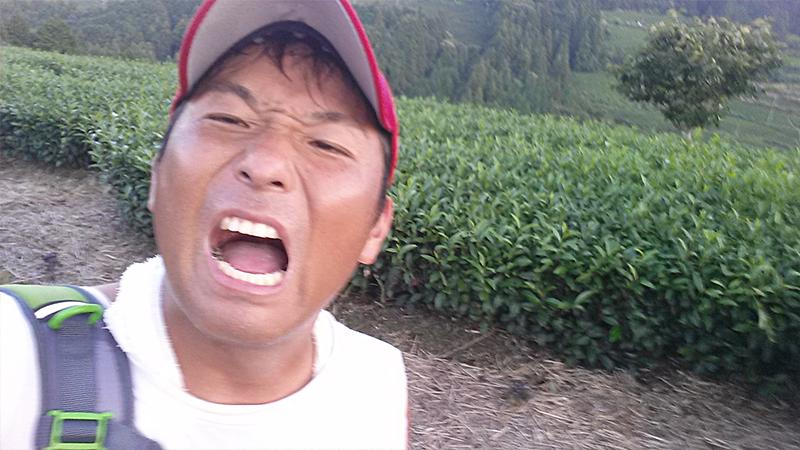 茶畑の中で疲れて自撮り