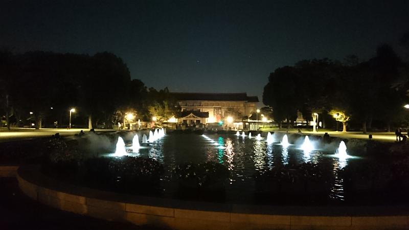 夜の上野公園の噴水前