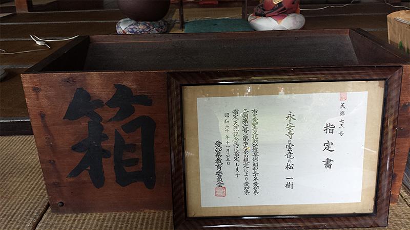 永安寺にある愛知県の天然記念物 雲竜の松の証書