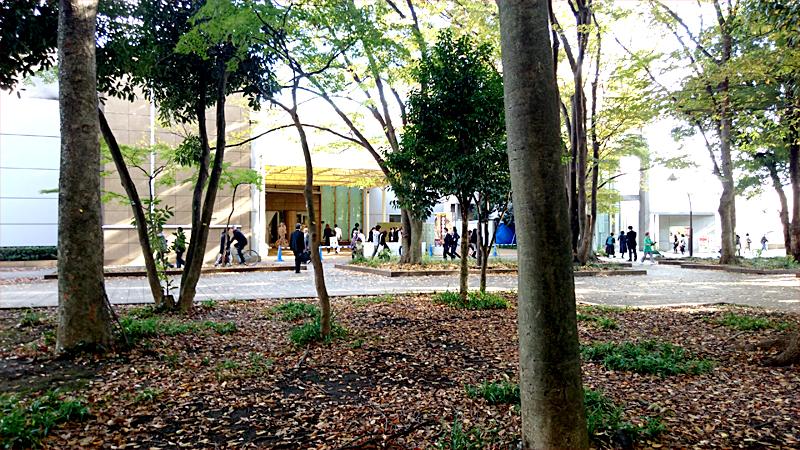森の中から上野の森美術館を見た風景