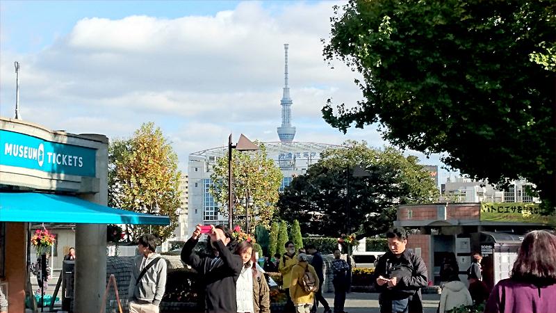 上野公園から東京スカイツリーを見た風景