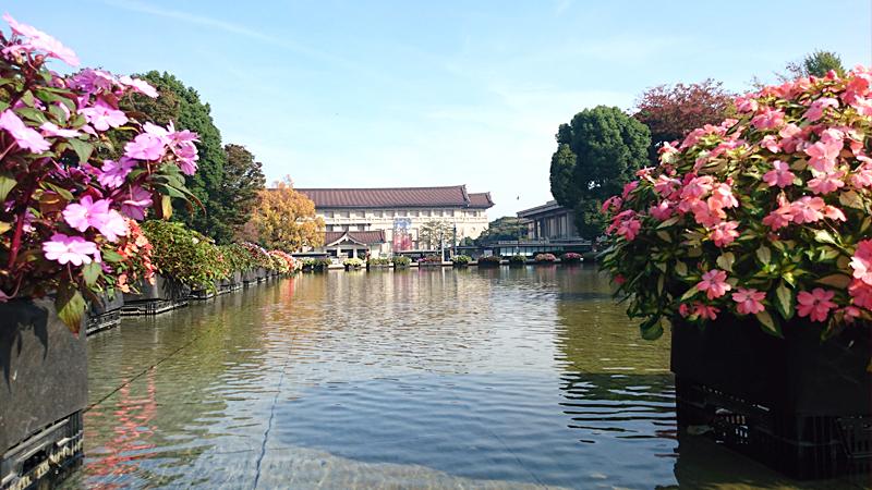 上野公園随一のビューポイント、噴水越しの東京国立博物館