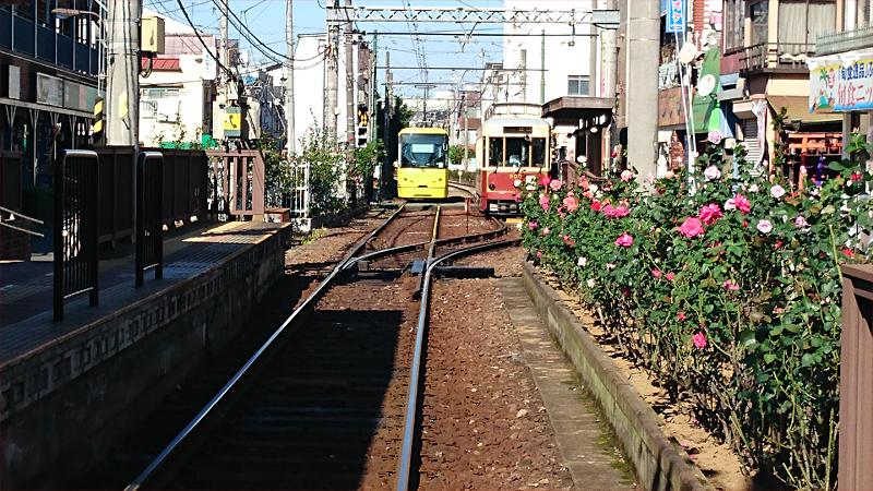 路面電車:都電荒川線