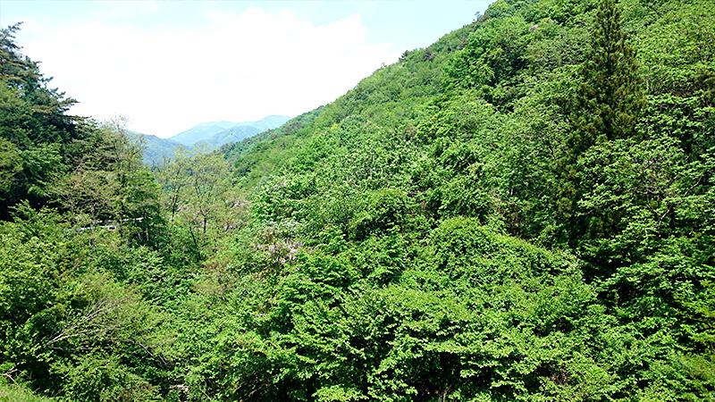笹子峠から見る山並み